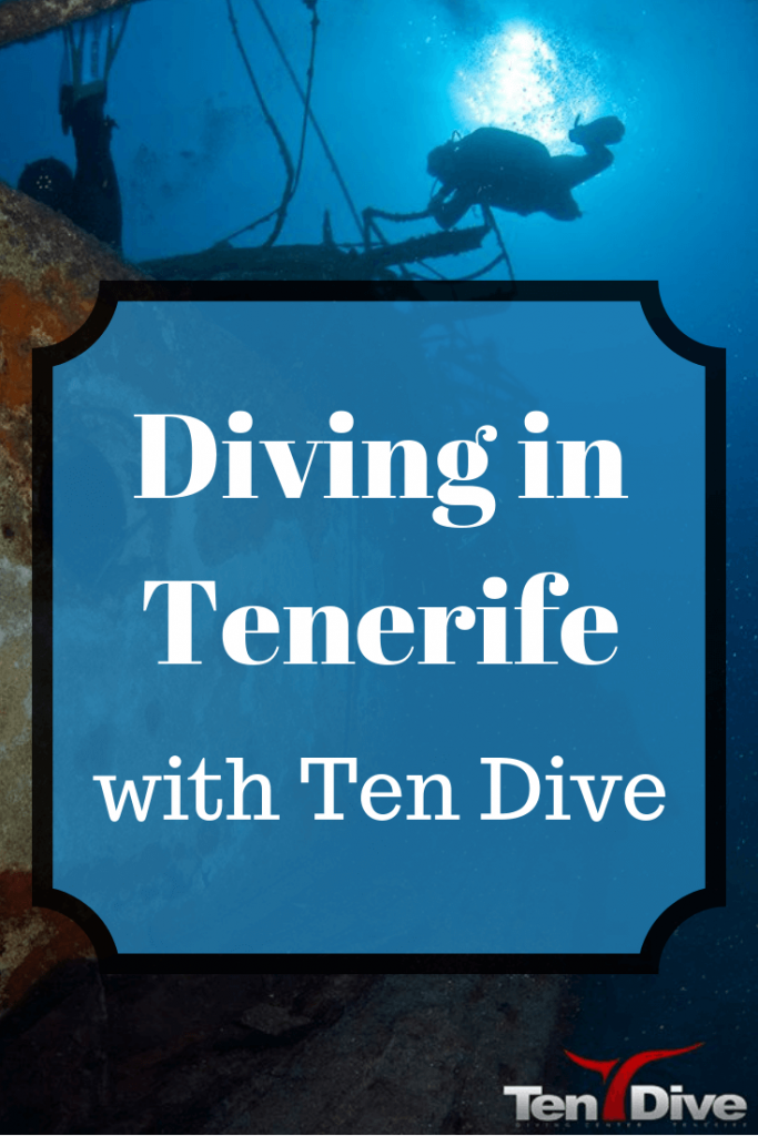 If you're looking for the best people to go scuba diving with in Tenerife, here's why you should go with TenDive
