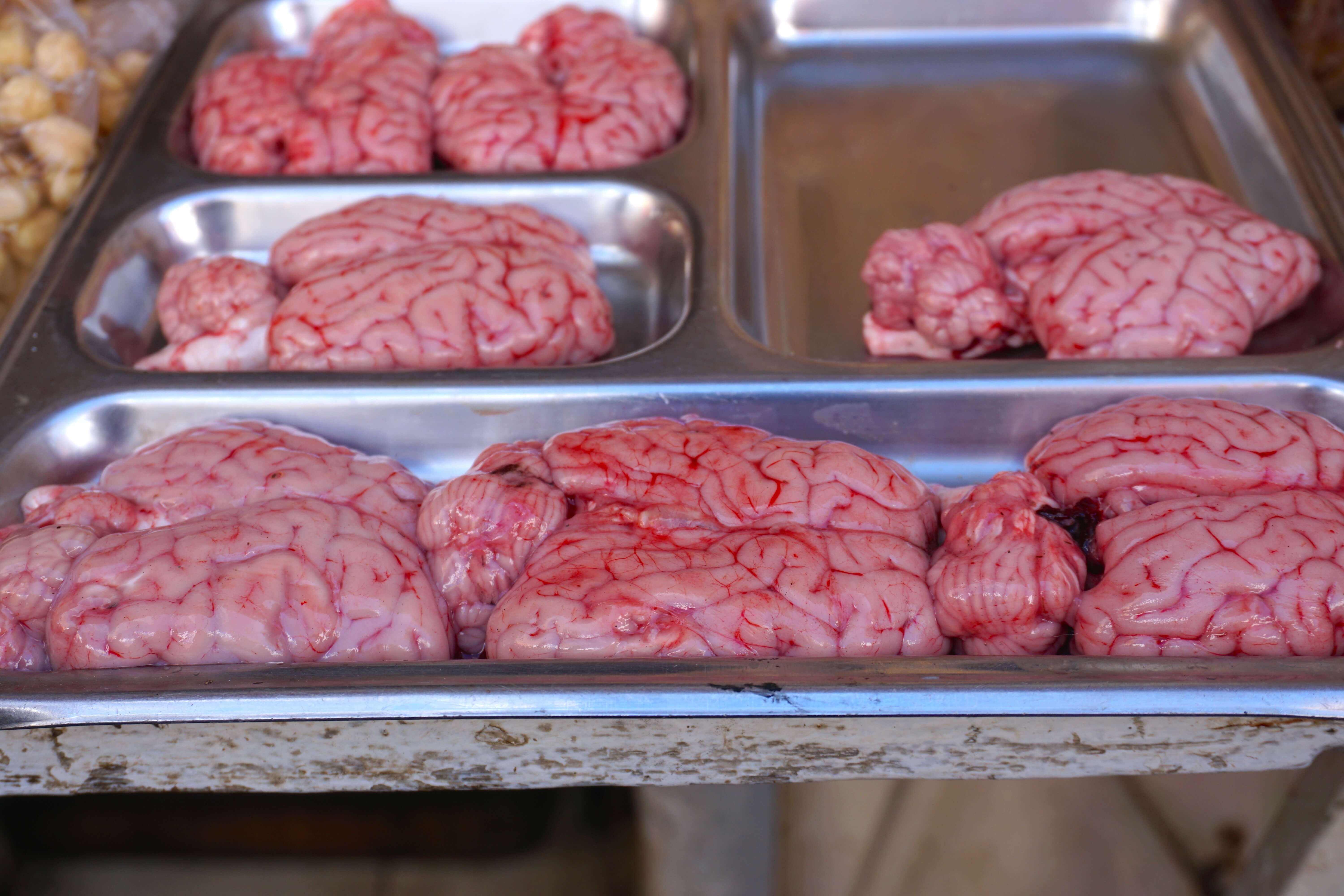 Sheep Brains - Morocco Food Guide: Delicious foods you need to try while visiting Morocco