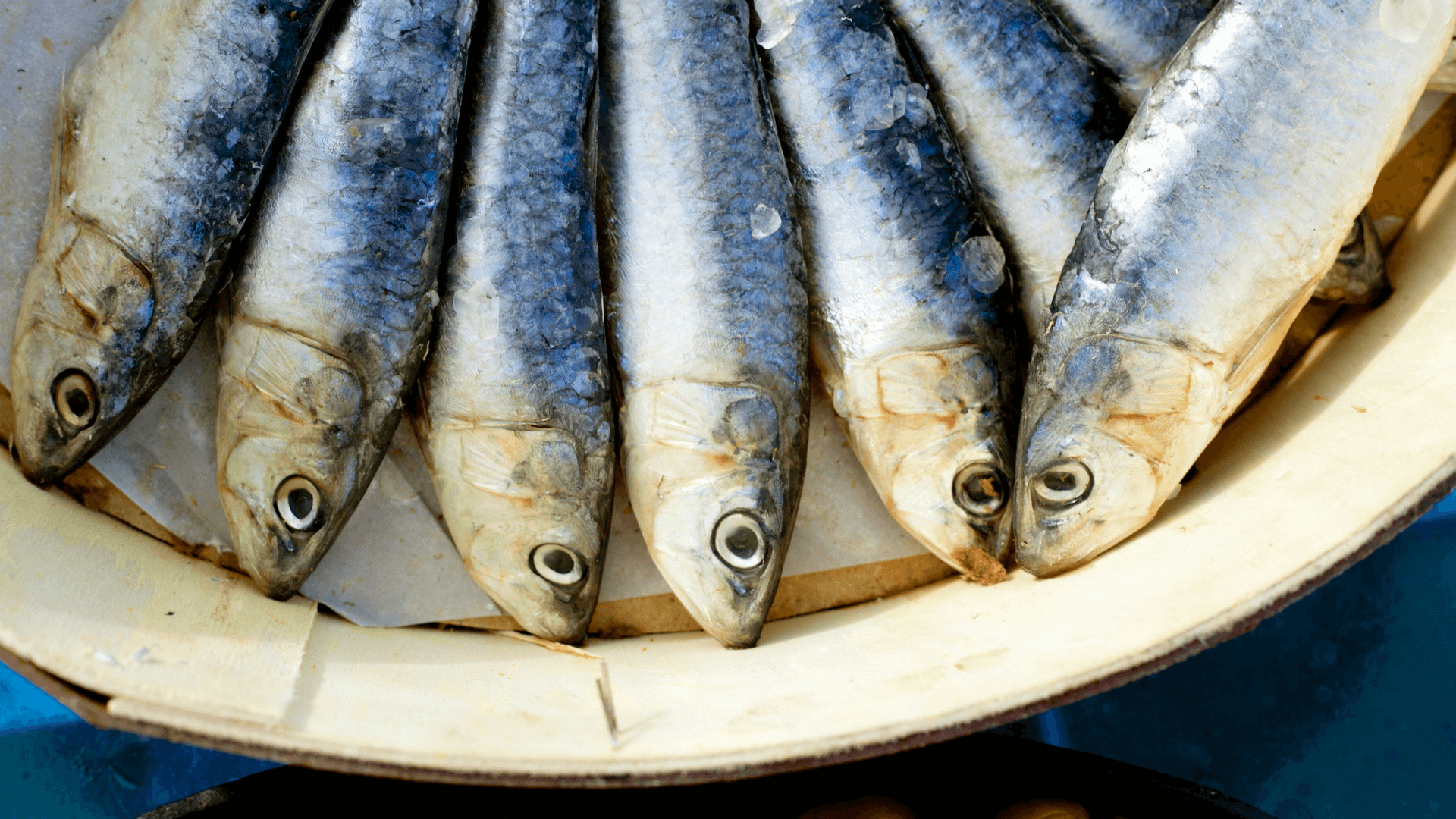 Sardines - Morocco Food Guide: Delicious foods you need to try while visiting Morocco