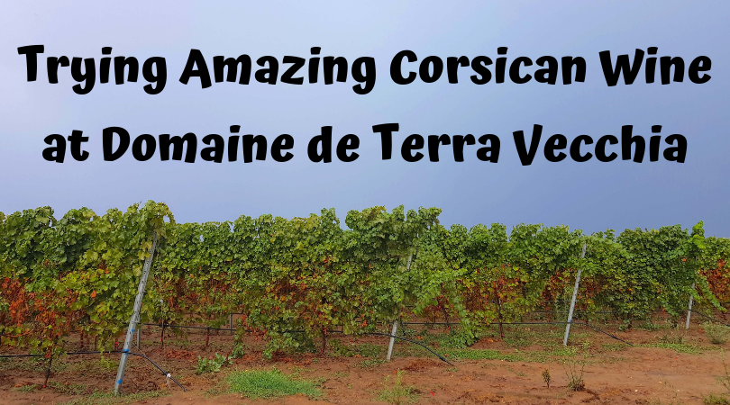 Trying Amazing Corsican Wine at Domaine de Terra Vecchia