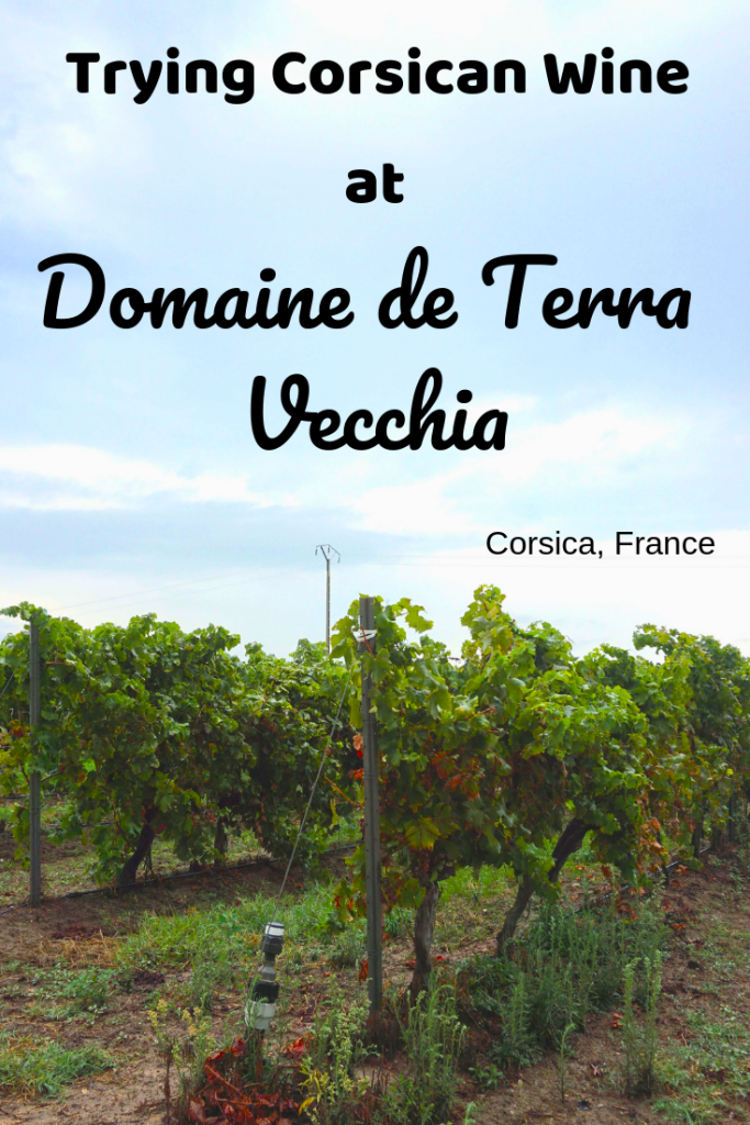 If you're a wine lover visiting Corsica make sure to visit a winery. Domaine de Terra Vecchia has a great selection of Corsican wine