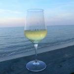 Trying Corsican Wine at Domaine de Terra Vecchia