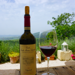 If you're a red wine lover visiting Verona make sure not to miss out on a Valpolicella wine tasting experience. It makes a great day trip from Verona