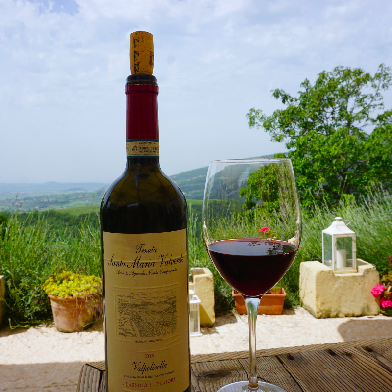Valpolicella Wine Tasting: A Great Day Trip From Verona