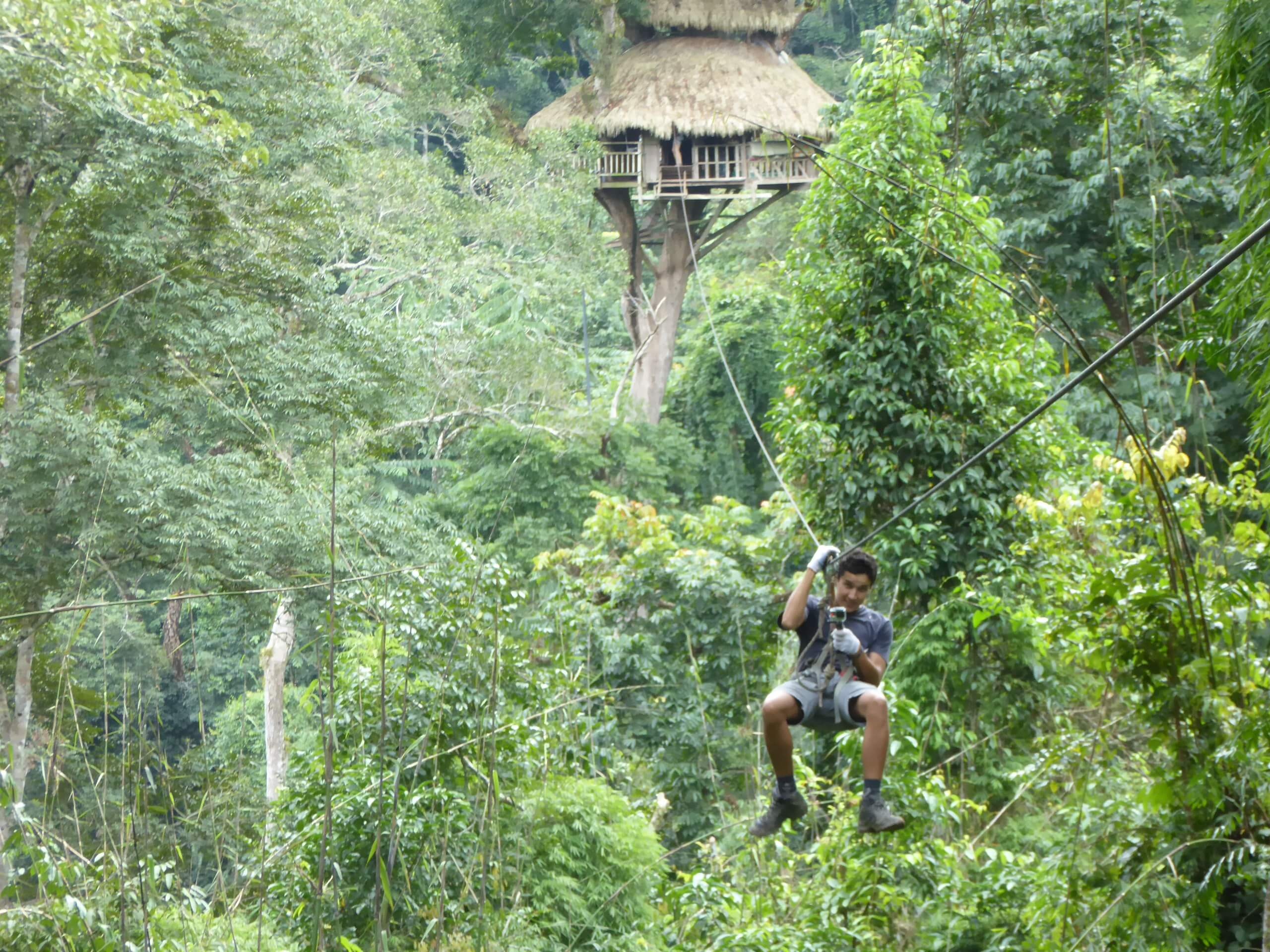 The Gibbon Experience Zip Line in Laos