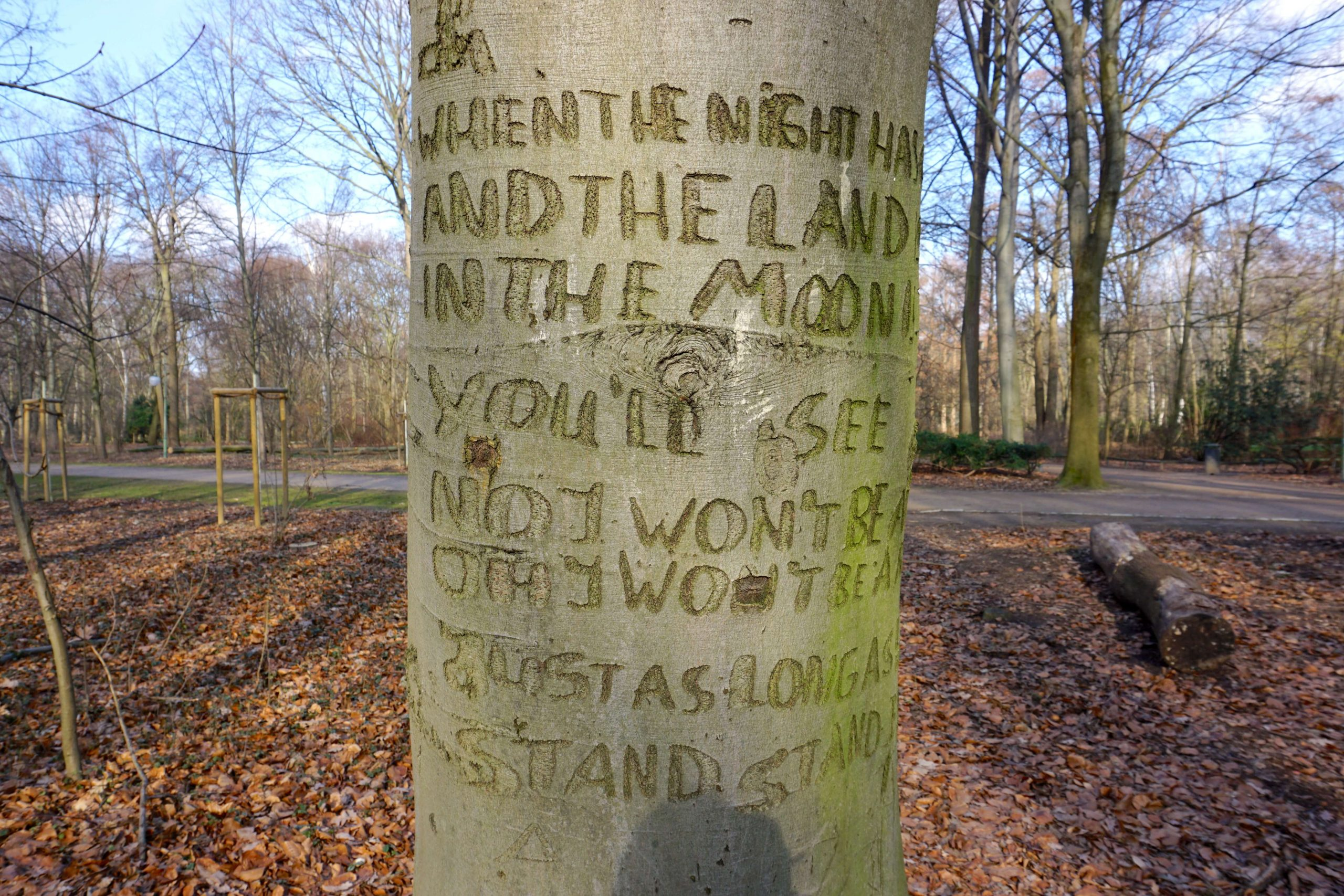 Stand By Me Tree in Berlin - A tree in Tiergarten with the opening lyrics to 'Stand By Me' carved into it