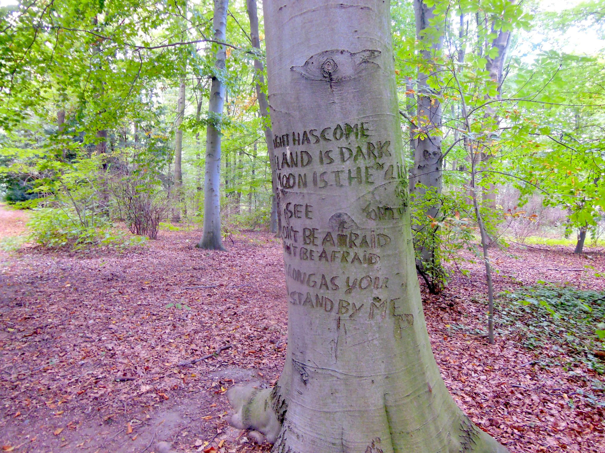 The Stand By Me Tree in Berlin - A tree with the opening lyrics to the song Stand By Me carved into it
