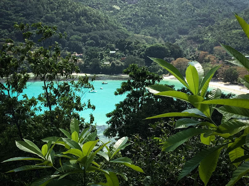 Stunning Ephelia Resort Zip Line - Mahe Island, Seychelles