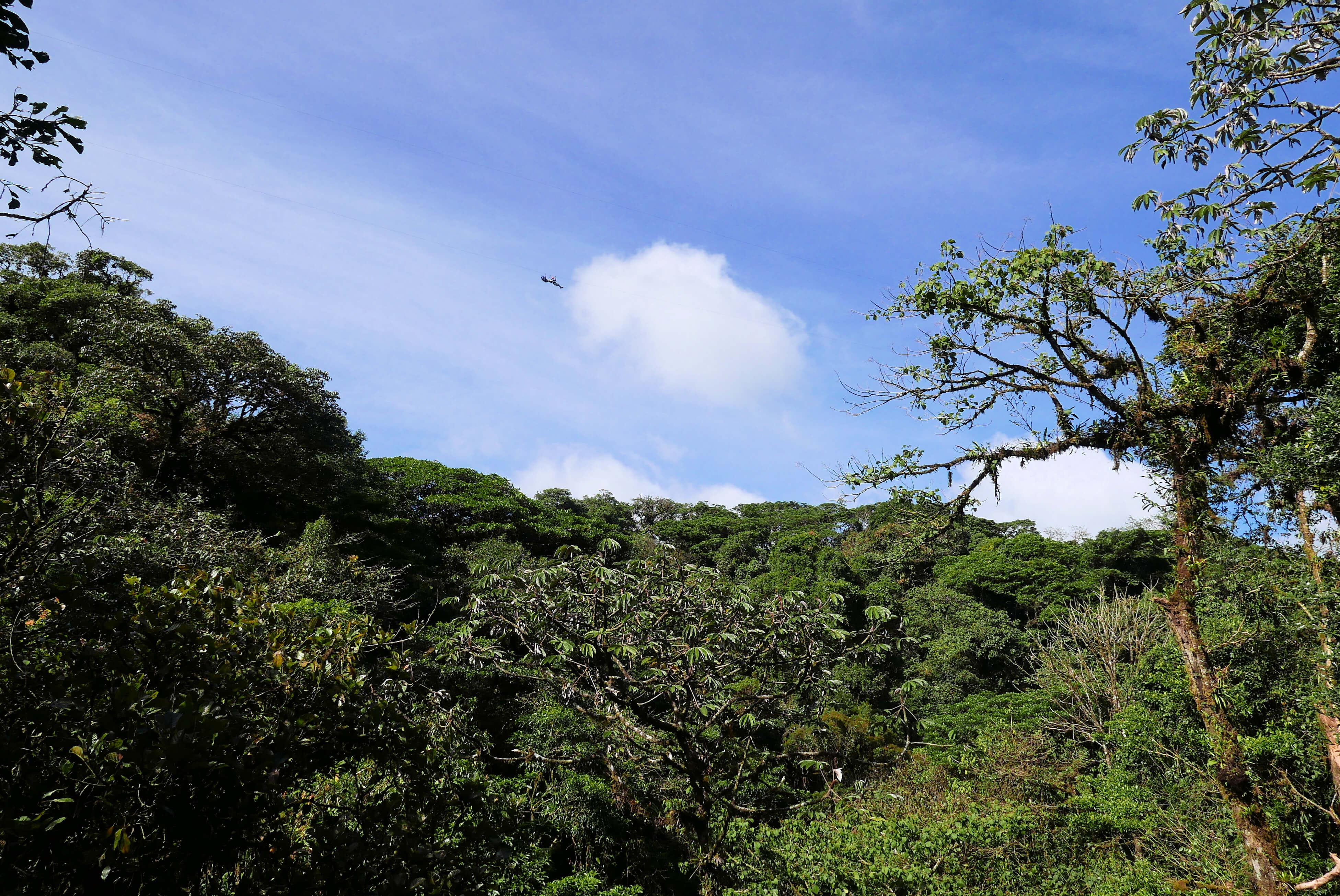 Zip Lining in Selvature Adventure Park in Costa Rica