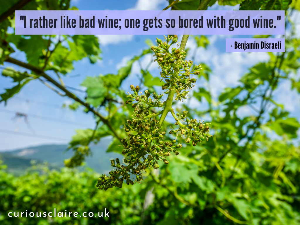 """""""I rather like bad wine; one gets so bored with good wine."""" - Benjamin Disraeli 