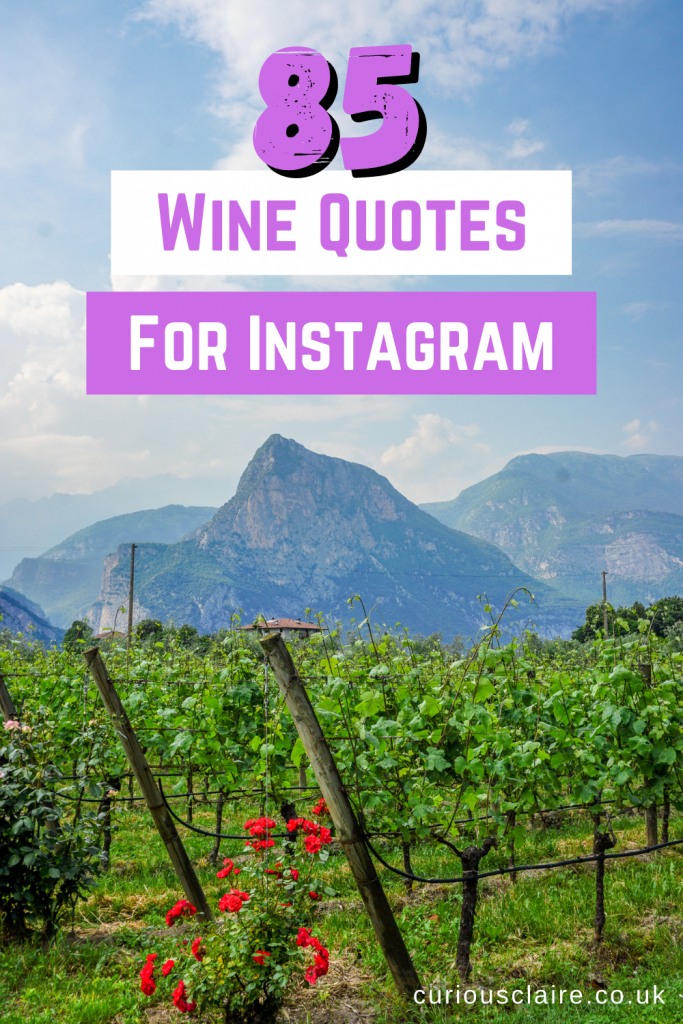 Looking for some good wine quotes? Need them for Instagram? These 85 clever and funny wine quotes are perfect for Instagram captions! #winequotes #winelovers #wine #instagram | Clever Wine Quotes for Instagram | Funny wine quotes perfect for Instagram | Short wine quotes for Instagram captions | Quotes about wine and happiness