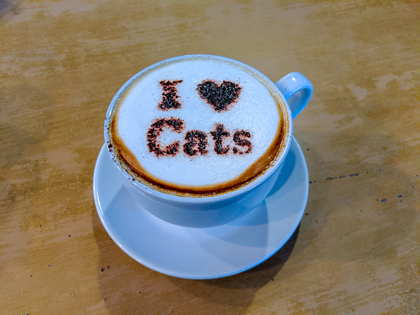 """A delicious cup of coffee with """"I heart cats"""" dusted into the foam - Manchester Cat Cafe, one of the amazing cat cafes in the UK"""